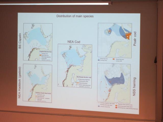 fiskeressurser-i-barentshavet