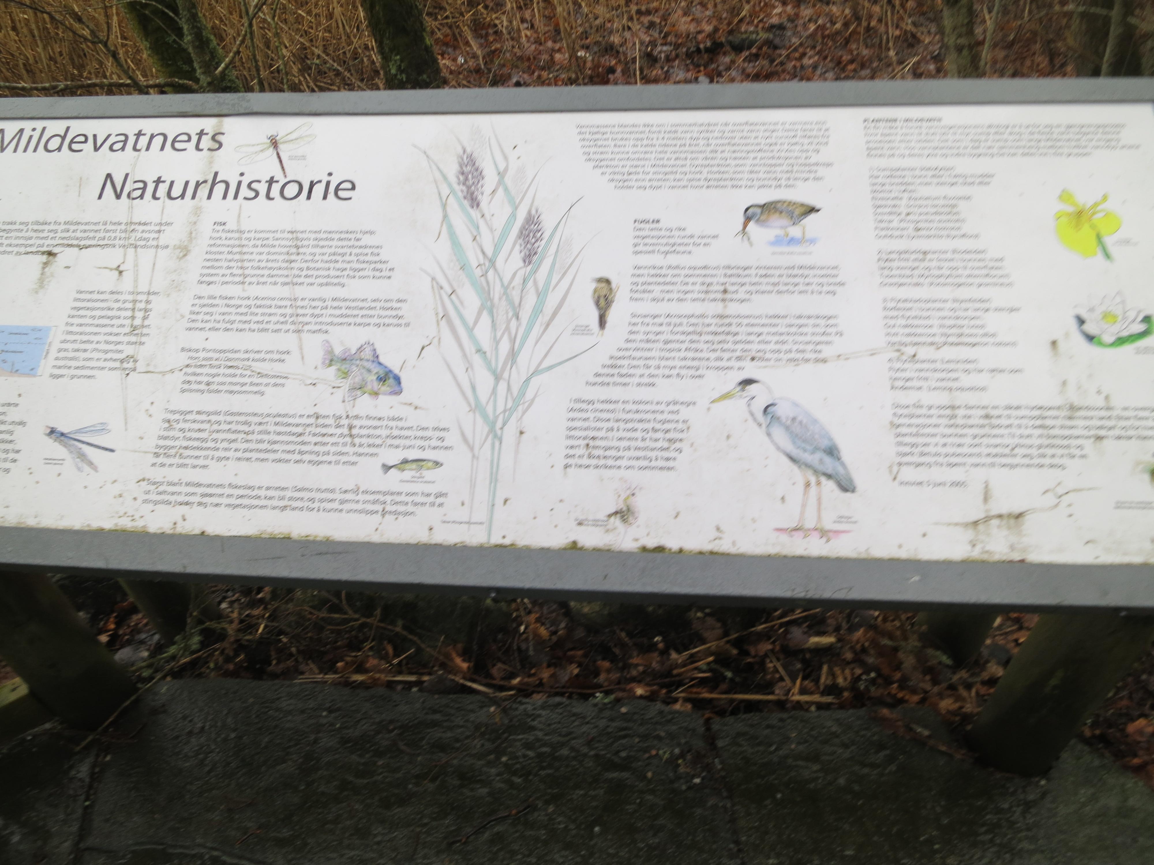 Skilt med fugler og vannplanter